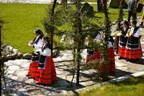 Private Cultural Spain Tour by Magical Spain