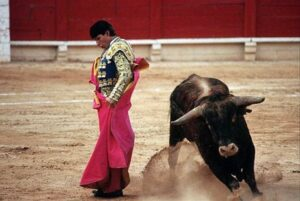 Corrida in Private Spain Tour by Magical Spain